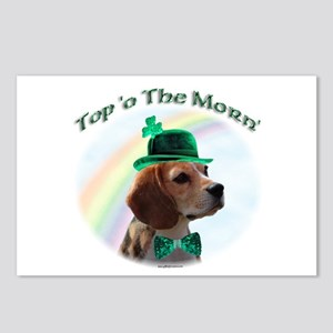 Beagle Morn Postcards (Package of 8)