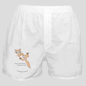 FloozyCatCPbbt Boxer Shorts