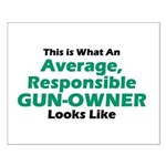 Gun-Owner Small Poster