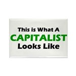 Capitalist Rectangle Magnet (100 pack)