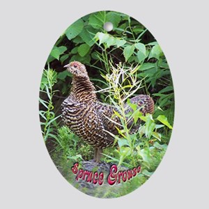 Spruce Grouse Oval Ornament