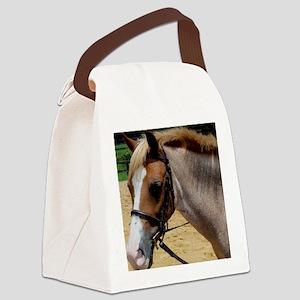 StrawberryTshirtFace Canvas Lunch Bag