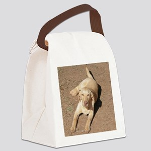 Yellow Lab 1900 x 1600 Canvas Lunch Bag