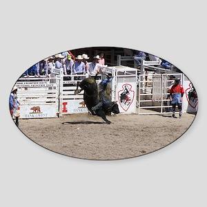 bull 2 Sticker (Oval)