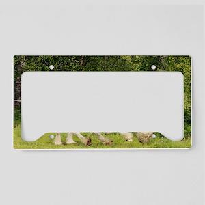 ic_8 License Plate Holder