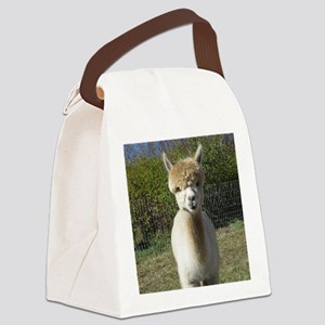 Peach closeup Canvas Lunch Bag