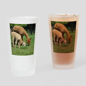 Momma  Me Alpaca  Cria Drinking Glass