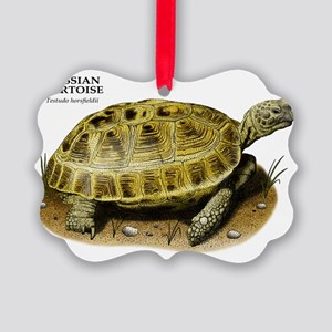 Russian Tortoise Picture Ornament