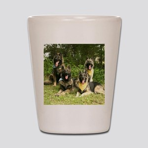 wildeshots-052210 158b Shot Glass