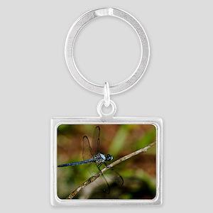 Dragon fly print Landscape Keychain