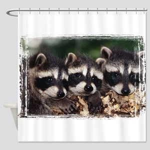 3 Raccoons Shower Curtain