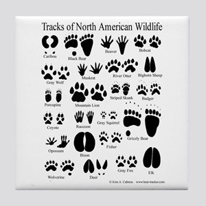 Animal Tracks Guide Tile Coaster