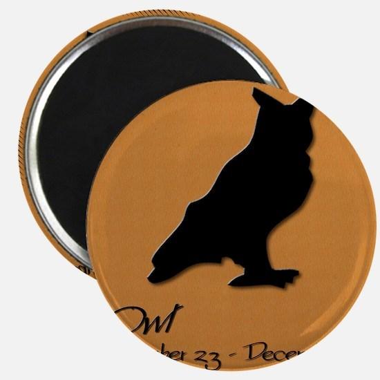 owl_10x10_colour Magnet