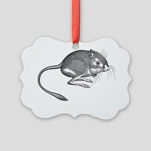 Kangaroo Rat Picture Ornament