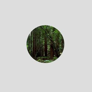 Muir Woods Mini Button