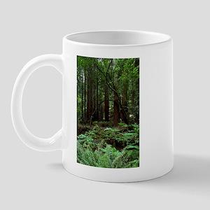 Muir Woods Mug