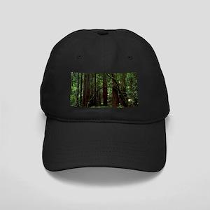 Muir Woods Black Cap
