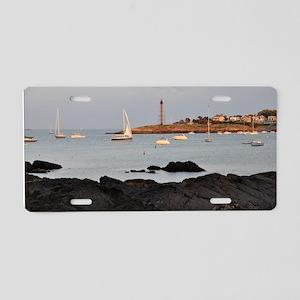 DSC_0595_01poster Aluminum License Plate