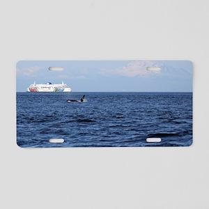IMG_9683 Aluminum License Plate
