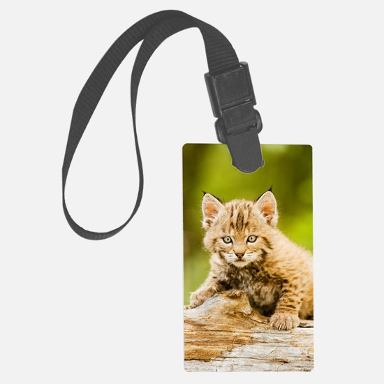 BabyBobcat-Notebook Luggage Tag