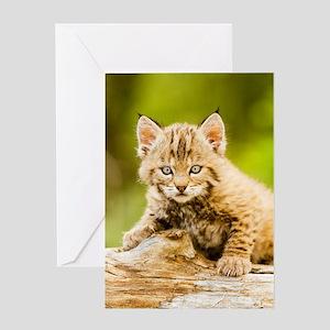 BabyBobcat-Notebook Greeting Card