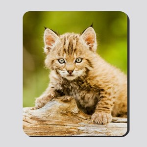 BabyBobcat-Notebook Mousepad