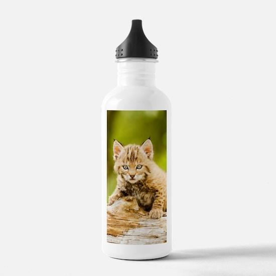 BabyBobcat-Notebook Water Bottle