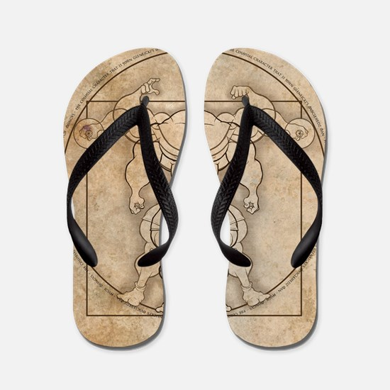 big_vitruv_clock Flip Flops