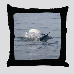 2-1 Throw Pillow