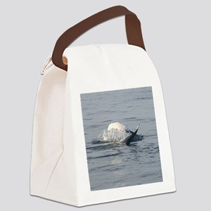 2-1 Canvas Lunch Bag