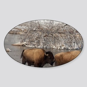 Yellowstone National Park. Wild Yel Sticker (Oval)