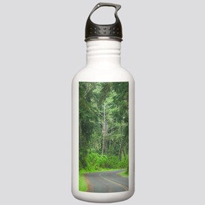 Road Leading Through t Stainless Water Bottle 1.0L