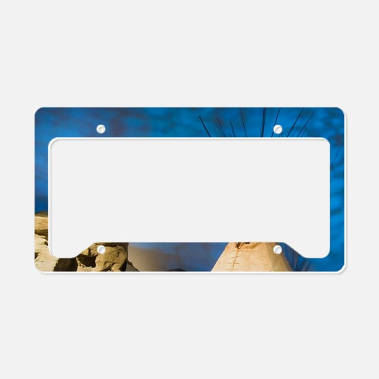 Buffalo Bill Historical Cente License Plate Holder