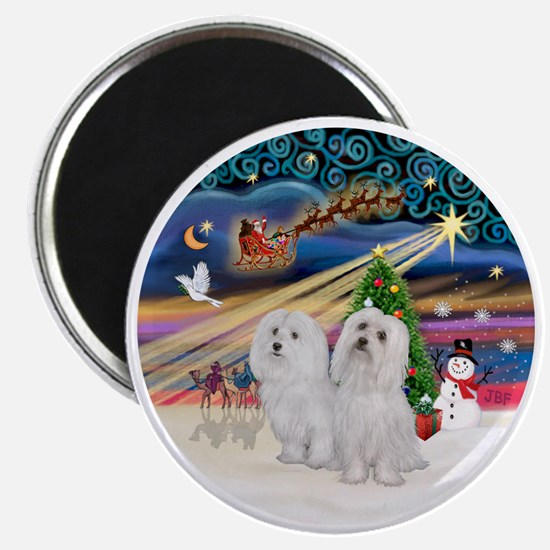 Xmas Magic - Maltese (TWO) Magnet