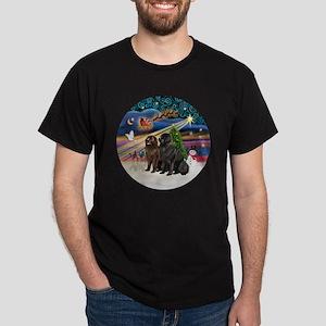Xmas Magic - Newfoundland (TWO-Blk-Br Dark T-Shirt