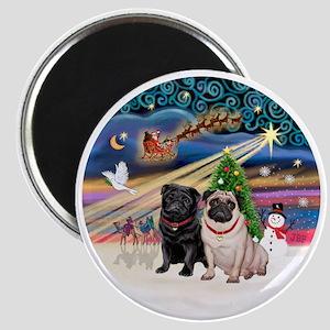 Xmas Magic - Pugs (TWO-fawn+Black) Magnet