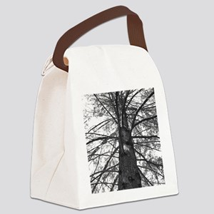 Tree at Ladybird Lake Canvas Lunch Bag