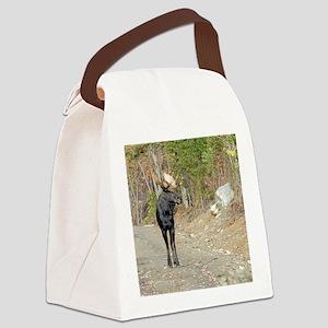 tile 4 Canvas Lunch Bag