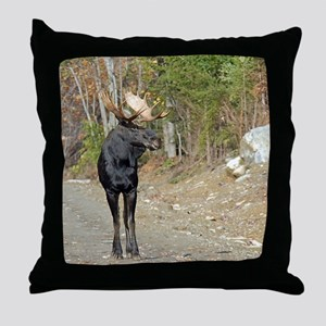 9x12_print  4 Throw Pillow
