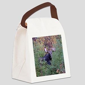 11x11_pillow  5 Canvas Lunch Bag