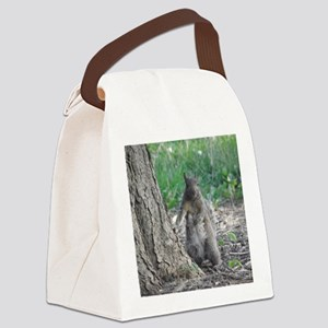 P5250237 Canvas Lunch Bag