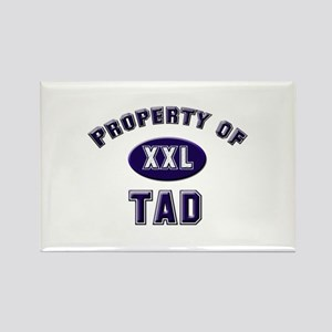 Property of tad Rectangle Magnet