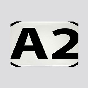 Ann Arbor A2 Michigan Oval Rectangle Magnet