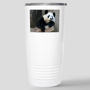 IMG_9015 Stainless Steel Travel Mug
