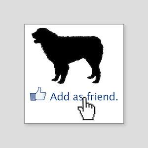 "Australian-Shepherd13 Square Sticker 3"" x 3"""