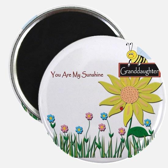 You Are My Sunshine Infant Blanket Magnet