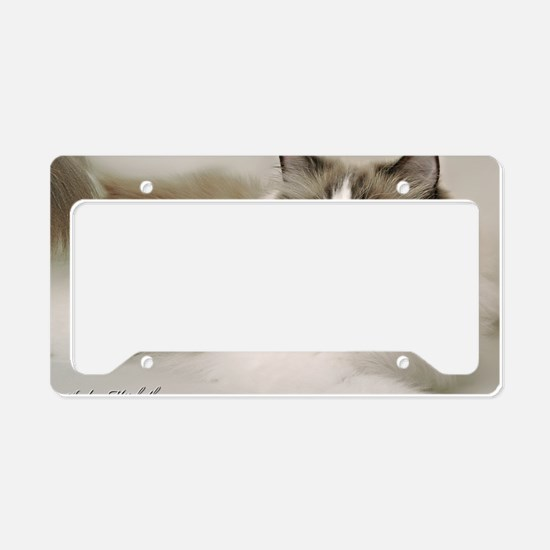 2-January License Plate Holder
