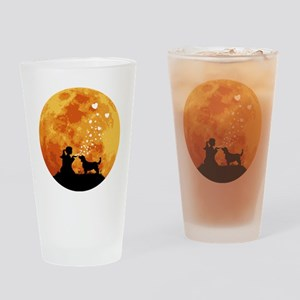 Welsh-Springer-Spaniel22 Drinking Glass