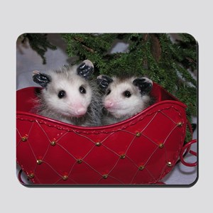 Christmas Opossums in Sleigh Mousepad