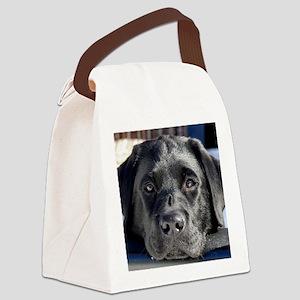 1 jan 02_16_09_3 copy Canvas Lunch Bag